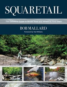 Squaretail: The Definitive Guide to Brook Trout and Where to Catch Them