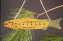 7 Inch Fish Ruler Ornament