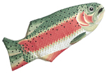 Rainbow Trout Mitt